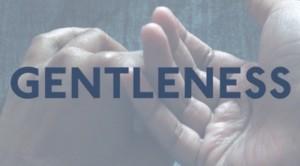 preview_Gentleness